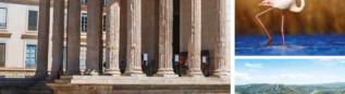 Open Nîmes Tourisme